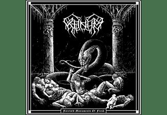 Khnvm - Foretold Monuments Of Flesh (LTD Numbered Digipak)  - (CD)