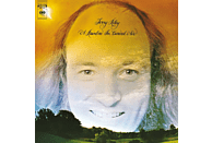 Terry Riley - A Rainbow In Curved Air [Vinyl]