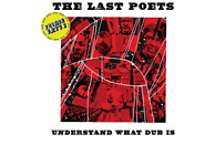 The Last Poets, Prince Fatty - Understand What Dub Is [Vinyl]