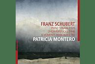 Patricia Montero - Sonate D 571/6 Moments musicaux D 780 [CD]