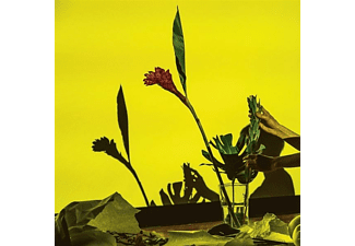 Ucc Harlo - UNITED  - (Vinyl)
