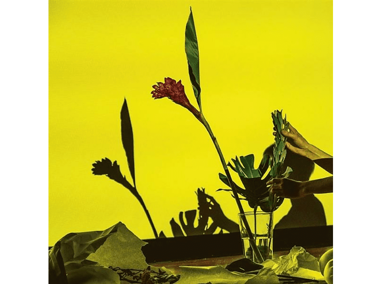 Ucc Harlo - UNITED [Vinyl]