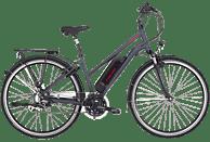 FISCHER - FAHRRAD ETD 1806 Trekkingrad (28 Zoll, 44 cm, Trekking Rahmen, 422 Wh, Dunkel anthrazit matt)