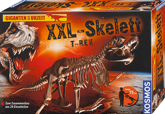 pixelboxx-mss-80774201
