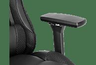 SNAKEBYTE BVB Multi Gaming Chair Gaming Stuhl, Schwarz/Gelb
