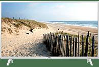 LG 43UM7390PLC UHD TV Smart TV (Flat, 43 Zoll/108 cm, UHD 4K, SMART TV, webOS 4.5 (AI ThinQ))