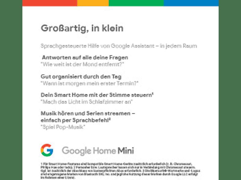 Google Home Mini Smart Speaker Karbon