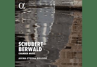 Anima Eterna Brugge, Franz Adolf Berwald - Chamber Music  - (CD)