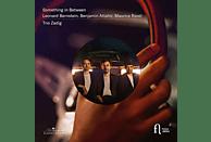 Trio Zadig - Something In Between [CD]