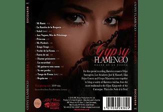 Felipe / Jose Amador / Elias Feijoo Gom Sauvageon - Gypsy Flamenco-Noche de la Fiesta  - (CD)