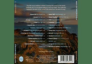 VARIOUS - Best of Welsh Folk  - (CD)