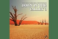 VARIOUS - Down In The Valley Vol.3 [Vinyl]