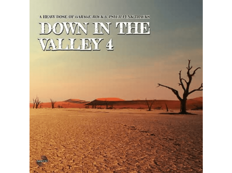 VARIOUS - Down In The Valley Vol.4 [Vinyl]