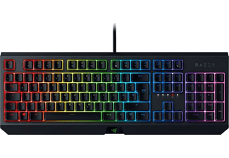 RAZER Gaming Tastatur BlackWidow 2019, Razer GREEN, USB (RZ03-02860400-R3G1)
