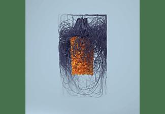Plaid - Polymer  - (CD)