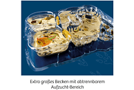 KOSMOS Triops-Welt Experimentierkasten, Mehrfarbig