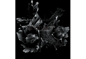 Spotlights - Love & Decay  - (CD)