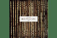 Steve Moore - Beloved Exile [CD]