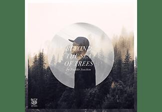 Freddie Joachim - Beyond The Sea Of Trees (2LP+MP3)  - (LP + Download)