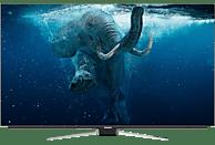 GRUNDIG 65 GOB 9990 FINE ARTS OLED TV OLED TV (Flat, 65 Zoll/164 cm, UHD 4K, SMART TV)