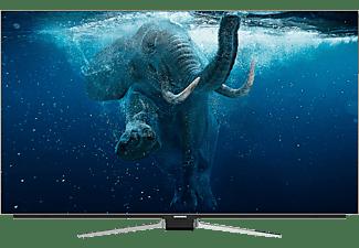 GRUNDIG 65 GOB 9990 FINE ARTS OLED TV OLED TV (Flat, 65 Zoll / 164 cm, UHD 4K, SMART TV)
