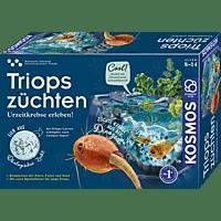 KOSMOS Triops züchten Experimentierkasten, Mehrfarbig