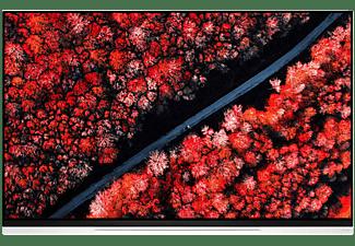 TV LG OLED 4K 55 inch OLED55E9PLA