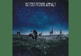 Pattern-seeking Animals - Pattern-Seeking Animals  - (CD)