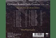 Elliot Simpson - Gostena:25 Lute Fantasies [CD]