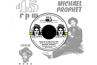 Michael Prophet, Roots Radics - HOLD ON TO WHAT YOU GOT/CRY OF THE WEREWOLF [Vinyl]