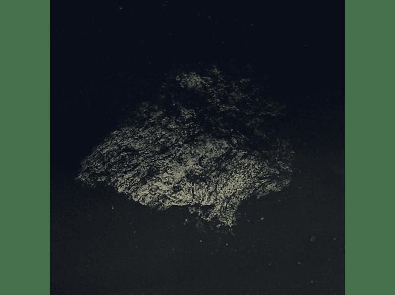 Multicast Dynamics - Lost World [LP + Download]