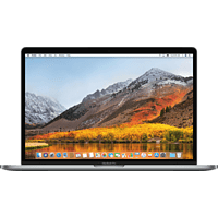 APPLE MacBook Pro MV902D/A mit deutscher Tastatur, Notebook mit 15.4 Zoll Display, Core i7 Prozessor, 16 GB RAM, 256 GB SSD, Radeon™ Pro 555X, Space Grau