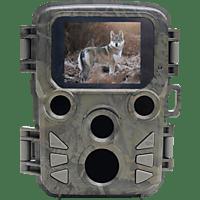 BRAUN PHOTOTECHNIK Scouting Cam Black500 Mini Widlkamera Camo, 5 Megapixel, Farb LCD
