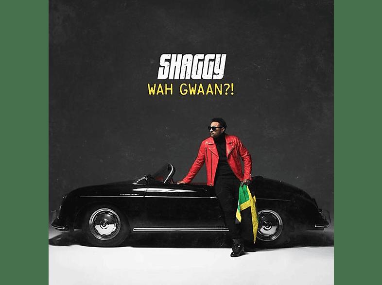 Shaggy - Wah Gwaan?! (Coloured 2LP,Light Green+Yellow) [Vinyl]