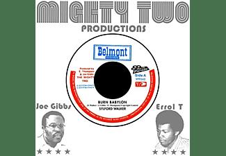 Sylford Walker, The Mighty Two - Burn Babylon/Burning Version  - (Vinyl)