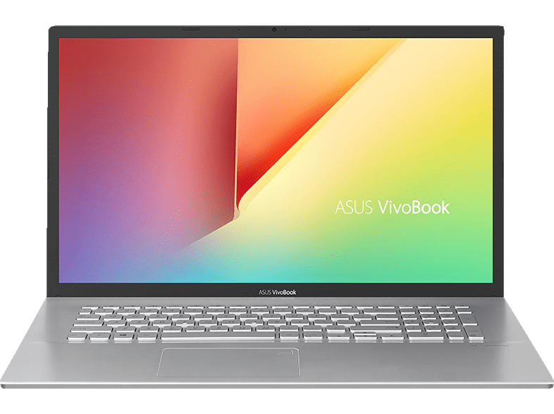 ASUS VivoBook 17 (A712FA-AU222T), Notebook mit 17.3 Zoll Display, Core™ i5 Prozessor, 8 GB RAM, 256 GB SSD, 1 TB HDD, Intel® UHD-Grafik 620, Transparent Silver