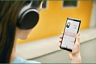 SONY WH-XB700, On-ear Kopfhörer Bluetooth Schwarz
