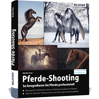 Pferde-Shooting - So fotografieren Sie Pferde professionell