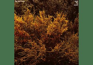 Jefru Cantu-ledesma - Tracing Back The Radiance  - (Vinyl)