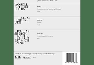 Chor & Orchester der J. S. Bach-Stiftung,  Rudolf Lutz - Kantaten No°28  - (CD)