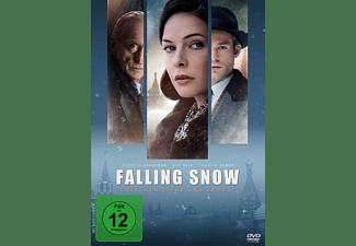Falling Snow-Zwischen Liebe und Verrat DVD