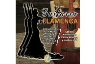 Guitarra Flamenca - 2 CD
