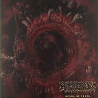 Hyperdontia - Nexus Of Teeth [Vinyl]
