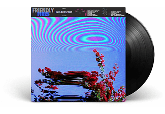 Friendly Fires - Inflorescent Vinyl