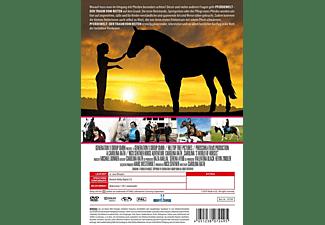 Pferdewelt DVD