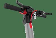 TECHNOSTAR TES 300 E-RICA E-Scooter (10 Zoll, Schwarz/Gunmetal/Rot)