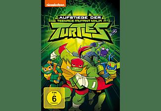 Die Aufstiege der Ninja Turtles DVD
