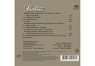VARIOUS - Brahms: Kammermusik  - (CD)