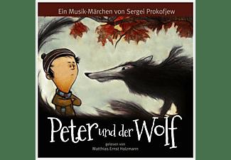 Gelesen Von Matthias Ernst Holzmann - PETER WELL-TEMPERE  - (Vinyl)
