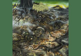 Cerebral Rot - Odious Descent Into Decay (Black Vinyl)  - (Vinyl)